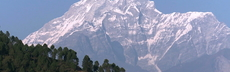 Af nepal